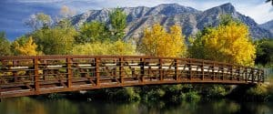 Provo Bankruptcy Attorney